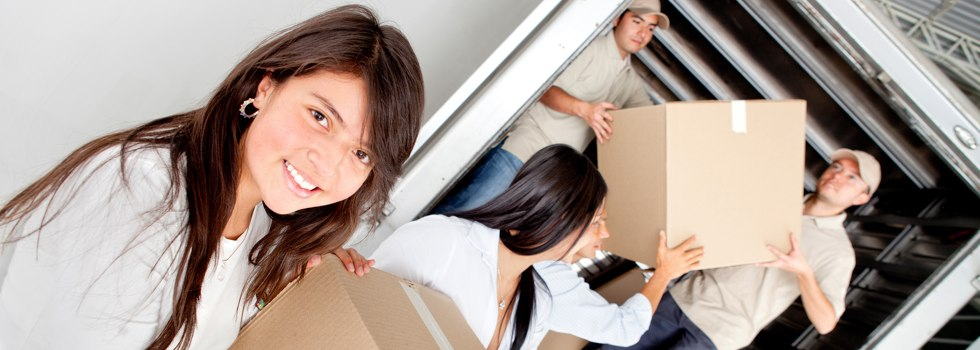 Professional Removalists Appila